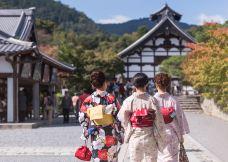 天龙寺-京都-尊敬的会员