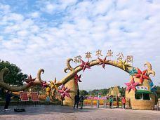 稻草农业公园-从化区-Yuaaa