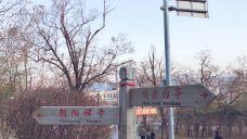 蟠龙山-大石桥-M27****132