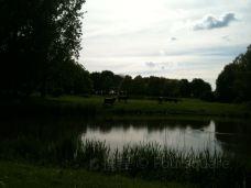 Hartelpark-斯派克尼瑟