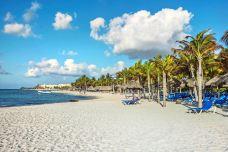 playa del carmen-坎昆-尊敬的会员