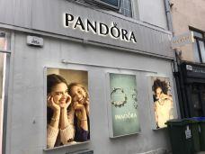 Pandora-垂利-Camillia
