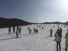 雪野滑雪场-莱芜区-m82****25
