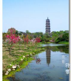 丹阳游记图文-南朝往事 ——清明小游暨给皇帝老儿家谒陵第五季