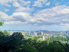 西山公园-萧山区-雪0106