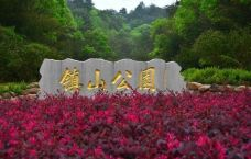 镇山国家森林公园-蕉岭-207094801