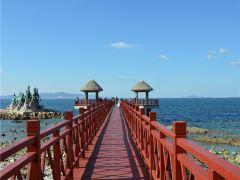 3日烟台+蓬莱+威海·葡萄酒之乡+甲午海战刘公岛