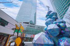 浦东嘉里城(花木路)-上海-蓝色的郁金香88