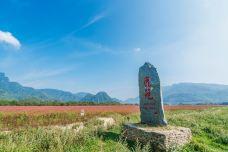 大九湖国家湿地公园-神农架-C_image