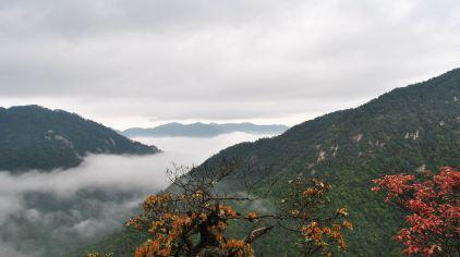 莽山国家森林公园 (16)