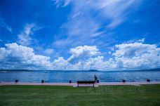 罗托鲁瓦湖-罗托鲁瓦-是条胳膊