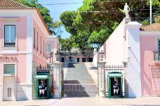 总统博物馆和总统府-里斯本