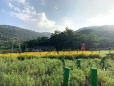 秀山岛景区-秀山岛-186****0301