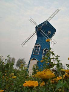 白河湿地公园-新野-_WeCh****62585