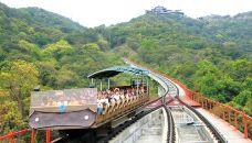 丛林缆车-深圳