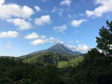 五指山国家级自然保护区-五指山-pepfly