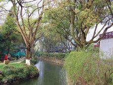 亭林园-昆山-lisza
