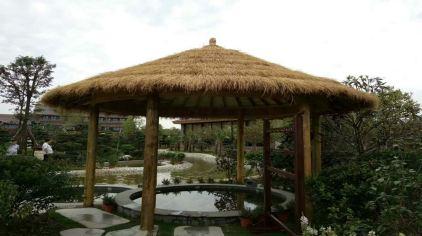 金雨玫瑰温泉度假区 (3)