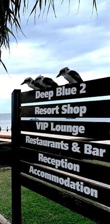 摩顿岛-布里斯班-世界美食游走达人