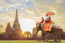 323825486_medium-泰国-doris圈圈