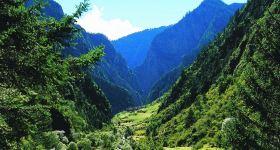 坡陇原始森林旅游景区成人票
