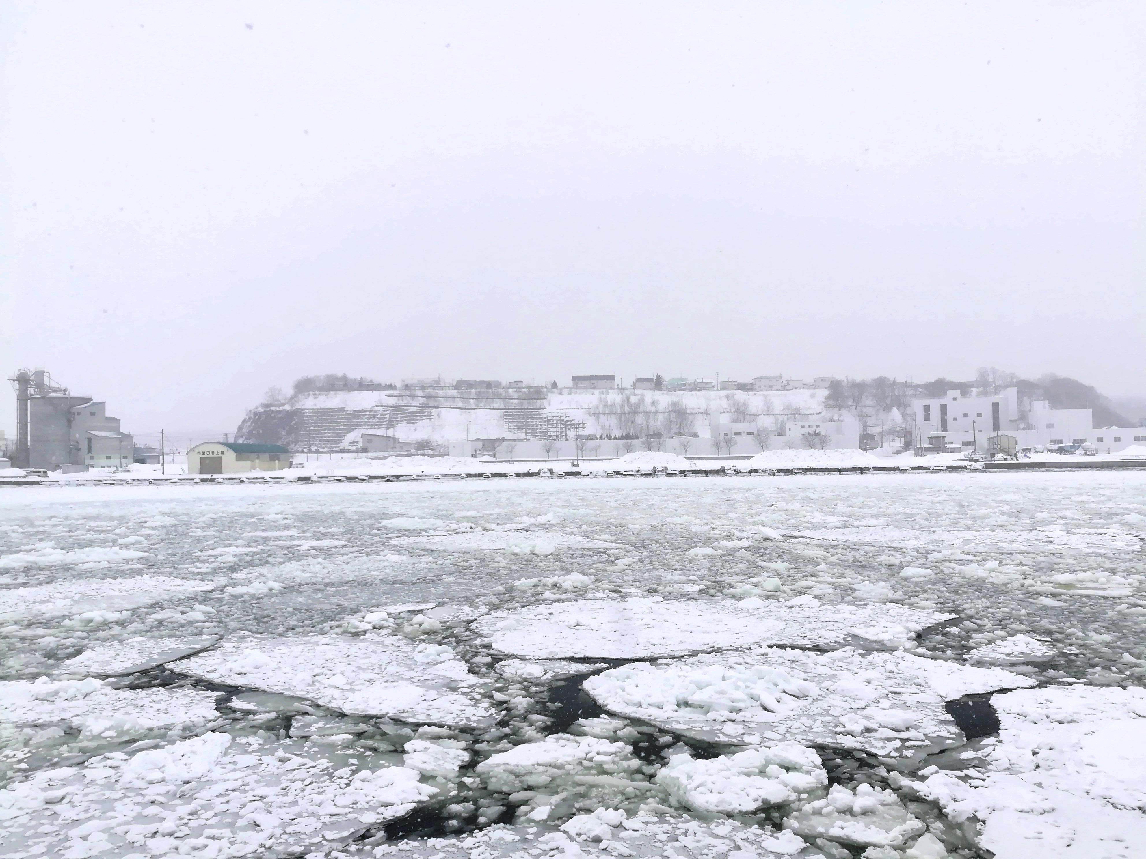Hokkaido Day Tour [Abashiri Drift Ice Sightseeing Cruise & Hokkaido Lunch]