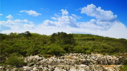 丫山石林3