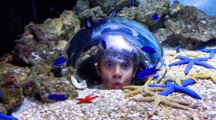 穆鲁拉巴海底世界水族馆1