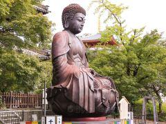 名古屋寺庙神社1日游