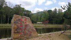 长白山红石峰-安图-SY梧桐