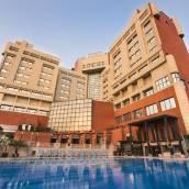 新德里蘇爾亞酒店