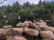 盘龙大观园-湘潭