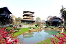 太湖古木艺术馆-湖州-C年度签约摄影师
