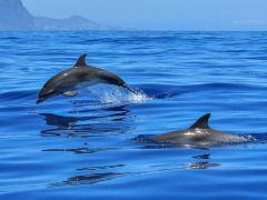 塞班岛潜水度假休闲2日游