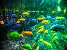 南京海底世界-南京