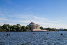 华盛顿-doris圈圈