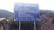 秀巴千年古堡群-工布江达-当地向导西安杨文力