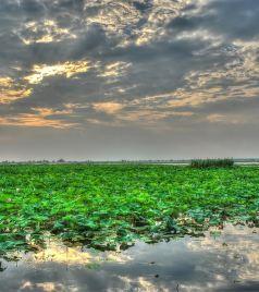 """汉川游记图文-""""江汉明珠""""湖北汉川—让你体会2015年最棒的旅行"""