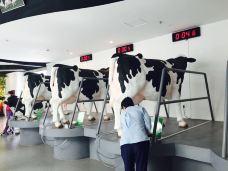 蒙牛工业旅游景区-和林格尔-_LAU