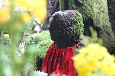法善寺-大阪-尊敬的会员