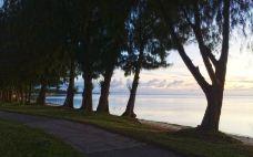 海滨大道-塞班岛-尊敬的会员