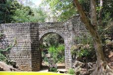 庞普勒斯植物园-毛里求斯-朱小咩