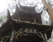 天然阁-青城山-Vicers