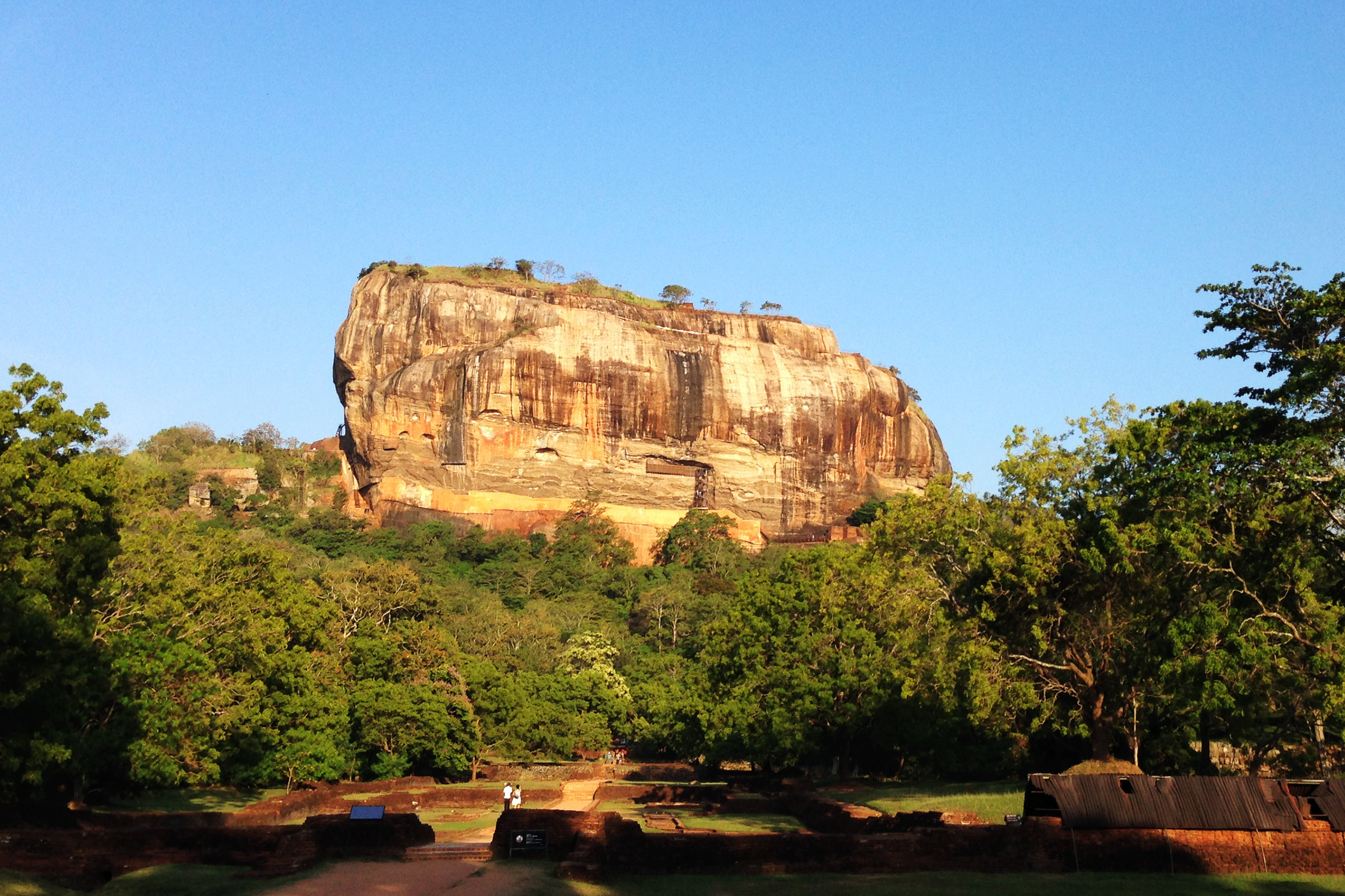 Minneriya Park + Sigiriya Rock Day Tour