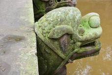 龙脑桥-泸县-蟋蟀老爹