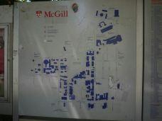 麦吉尔大学-蒙特利尔-m16****835
