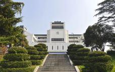 _DSC1360-武汉大学-武汉-走爷