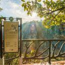 張家界天門山國家森林公園+天門山玻璃棧道+鬼谷棧道一日遊(市區免費接送)