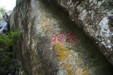 宋体茶洞-武夷山-doris圈圈