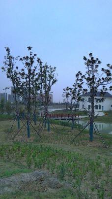 小岗村-凤阳-大力水手